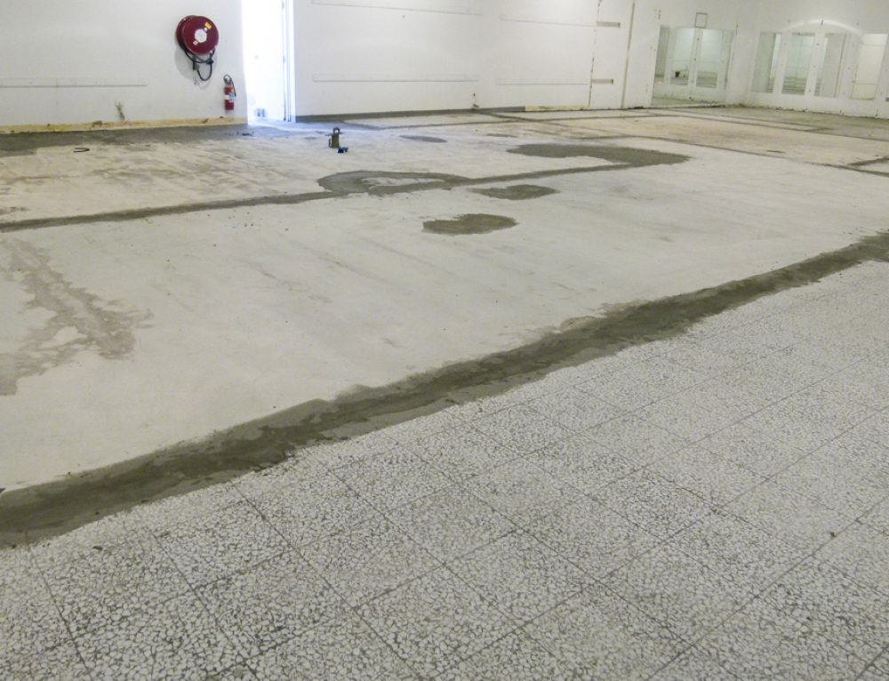 Existing Floor Removal